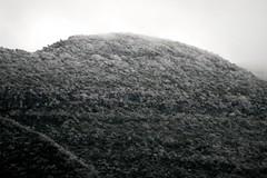 Montaas congeladas en Monterrey, Mxico (myrmardan) Tags: mountain ice gelo berg mexico mount cerro nuevoleon mexique monte montaa eis mont monterrey hielo montanha glace yama mexiko messico ghiaccio   mekishiko