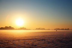 City of the plain (Paul O' Connell) Tags: park ireland winter sunset people dublin mist snow fog walking couple frost alone lovers phoenixpark lastpeopleonearth