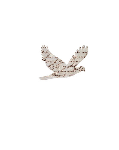 french-dove