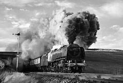 46229 Kirkby Stephen (geoffspages) Tags: railway steam uksteam duchessofhamilton 46229