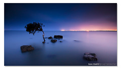 Working Title ([ Kane ]) Tags: ocean city longexposure sea tree water misty night reflections photography lights evening rocks glow dusk australia brisbane nighttime qld queensland kane 2009 lonetree gledhill sigma1020 50d mistywater kanegledhill wwwhumanhabitscomau kanegledhillphotography