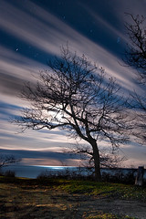 K20D3872 (Bob West) Tags: longexposure nightphotography ontario night lakeerie greatlakes nightshots startrails southwestontario bobwest k20d pentax1224 gaju2810