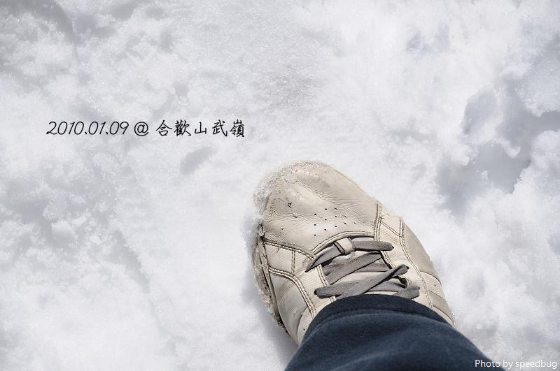 武嶺 (1).jpg