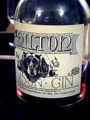 Chilton Damson Gin
