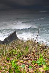 Oswald State Park-61.jpg (Thom Erickson) Tags: oregon coast pacificnorthwest capefalcon oswaldstatepark