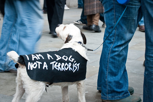 Im a dog, not a terrorist, by Tomas, Creative Commons: Attribution 2.0.