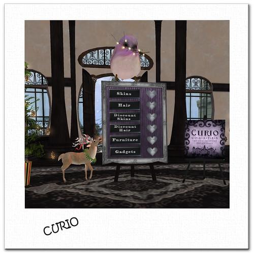 Curio copy-1