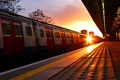 Vanishing point (Che-burashka) Tags: sunset urban orange sun london train underground golden vanishingpoint metro pavement tube nopeople commute commuting nottinghill lowangle emptystation lx3 landbrokegrove urbanlyric actuallyoverground welcomeuk