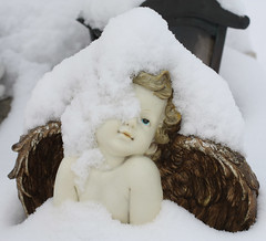 26. Jnner 2010: Eingeschneites Engerl am Friedhof in Oberndorf (Gertraud-Magdalena) Tags: schnee winter friedhof engel januar oberndorf eingeschneit jnner engerl