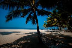 DSC_0014-2 (mehtavaibhav) Tags: beach landscape kerala alleppey
