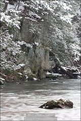 Brandywine (Winter) - Up Creek