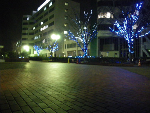 campus_in_the_night