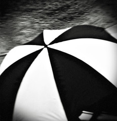 some days the rain never stops (futtoom.) Tags: blackandwhite monochrome rain umbrella downpour takenthroughawindow