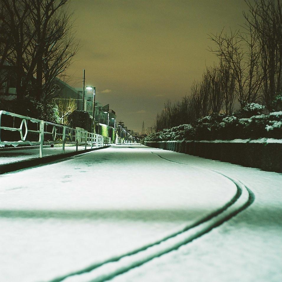 snow scene @Tokyo