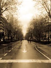 Palermo chiusa al traffico ? Non ha prezzo ... (Cicius) Tags: regionalgeographicsicilia rgsstreetphotography