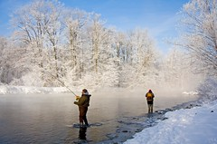 A Frosted Morning (Matt Champlin) Tags: life winter people white fish snow cold ice water forest river landscape person rainbow fishing frost quiet peace steel freezing frosty covered upstatenewyork trophy salmonriver trout icy steelhead rainbowtrout sportsmen altmar centerpin