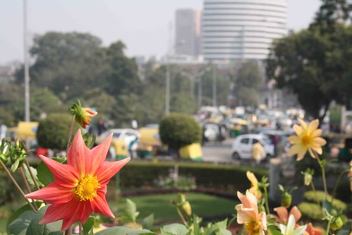 City Season – Palika Bazaar Park, Connaught Place