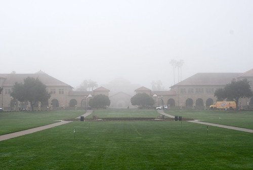 foggy Oval