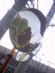 【写真】Mirror (DCC Leica M3)
