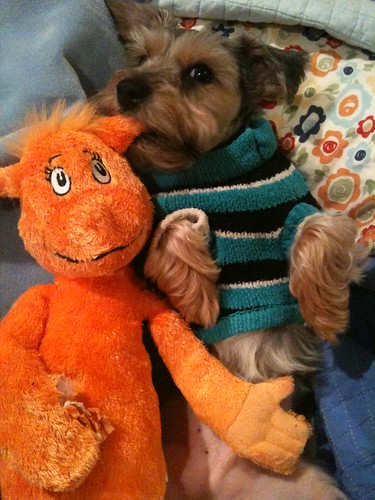 Maui and Dr. Seuss toy #2