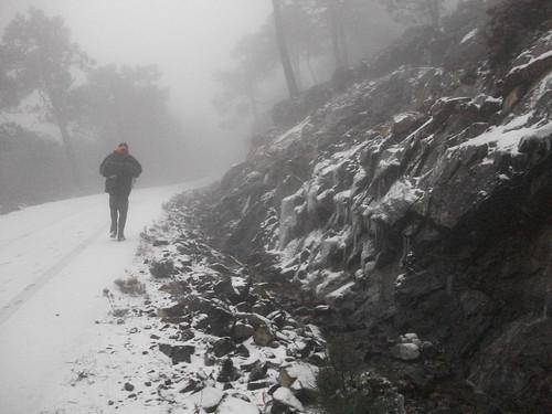 Los Reales nevado (4)