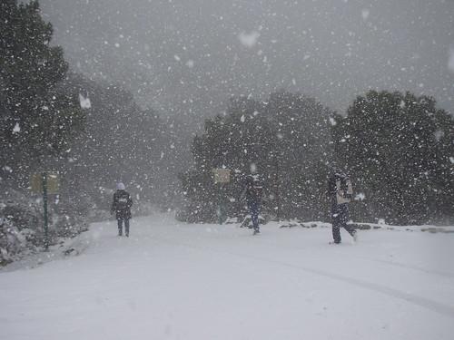 Los Reales nevados (10)
