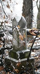 Dried Leaves, Ice, and Tombstone (Jessica Nunemaker) Tags: travel winter brown white snow black cold ice cemetery leaves frozen blog shiny headstone small tombstone deadleaves freezing icy towns sparkling shimmering hoosiers hoosier littleindiana indianablogger indianablog picturesinindiana picturesofindiana indianablogs
