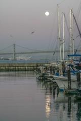 Moonlight (michael_hamburg69) Tags: city usa west america coast san francisco baybridge amerika westküste