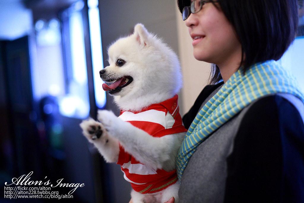 博仁&欣婷文定紀錄