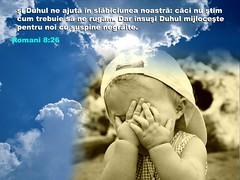 Romani 08-26 (Palosi Marton) Tags: kids childrens copii crestine versete biblice