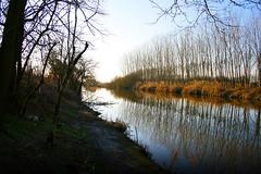 L'alba del tramonto (cicciobaudo) Tags: trees sunset sky water alberi canon river eos poplar tramonto fiume cielo po ferrara acqua pioppi volano 400d