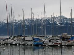 Catarge i Alpi (Daniel Paraschiv) Tags: port swiss lausanne pully excursie elvetia portul