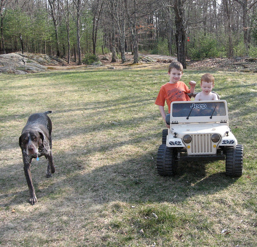 The boys and Jeb the dog
