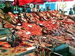 Catania - Mercato del pesce (catepol) Tags: market sicily mercato catania sicilia pesce generali stati innovazione catepol innovact