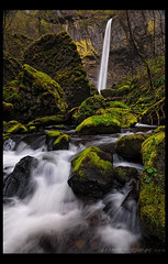 Elowah Falls (Lance Rudge) Tags: green oregon landscape moss nikon stream waterfalls columbiagorge d3 elowahfalls lancerudge primevalforestgroups pfmoss pfwaterfall