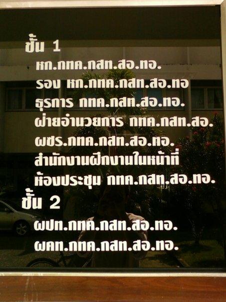 80492059