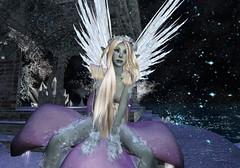 Looking On (Riley Mensing) Tags: avatar medieval sl avatars fairy fantasy secondlife elementa mysticalmagical