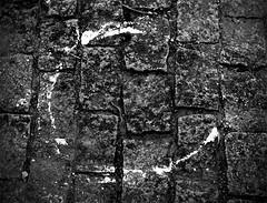 Enso, Pacaembu, 2006 (Andr Spinola e Castro) Tags: blackandwhite circle buddhism cobblestones zen pretoebranco crculo soto paraleleppedo budismo enso zenbuddhism zenbudismo sotoshu sotozenshu
