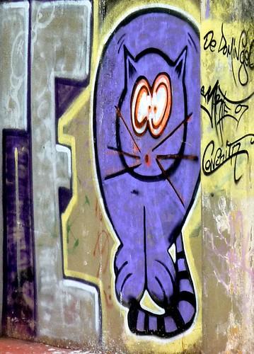 Graffiti Lugo gato minino