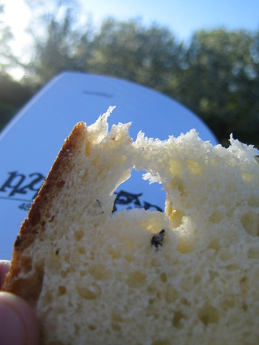 bread in park