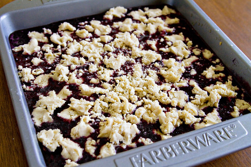 Blueberry Crumble Bars - 6