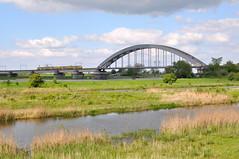 Kuilenburgse Spoorbrug (Rapsak) Tags: railroad bridge netherlands train river nederland railway brug rhine rhein rijn lek gelderland culemborg betuwe