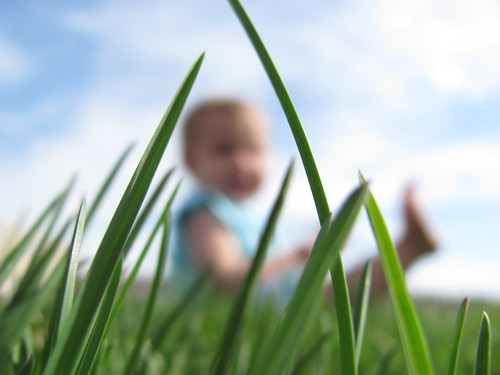 grass + baby
