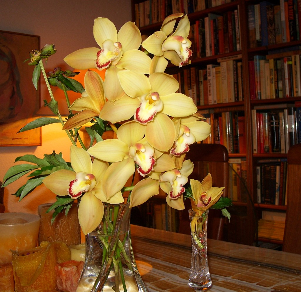 Golden yellow cattleya orchids -- the last remains of gift bouquet