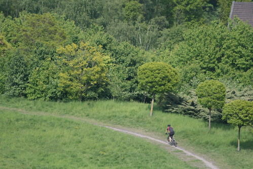 MTB-Trail auf Rheinpreußen