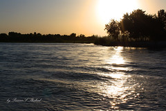 Tigris (PrincesS_Shahad) Tags: sunset nature canon river photography photo tigris