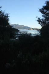 NZ 191