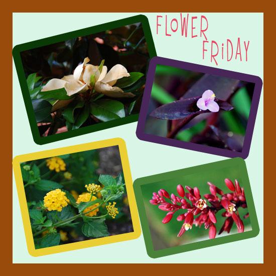Flower-Mosaic-05-28-10