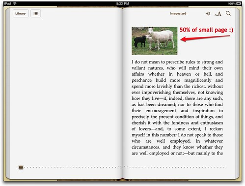 50% image iPad horizontal