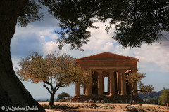 Sicilia 31 (DeStefano Daniele (OFF-OFF-on)) Tags: italy canon italia sicily sicilia agrigento valledeitempli trapani thegoldenphoenix absolutegoldenmasterpiece destefanodaniele